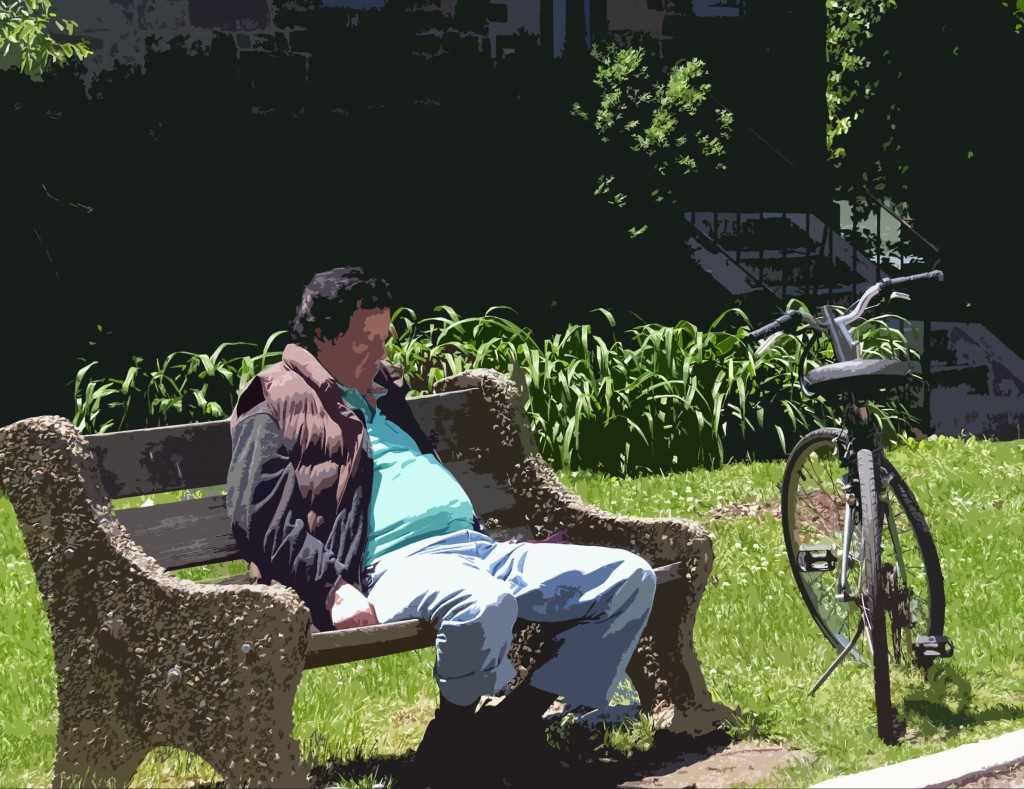 Biker Bench Napping Painting