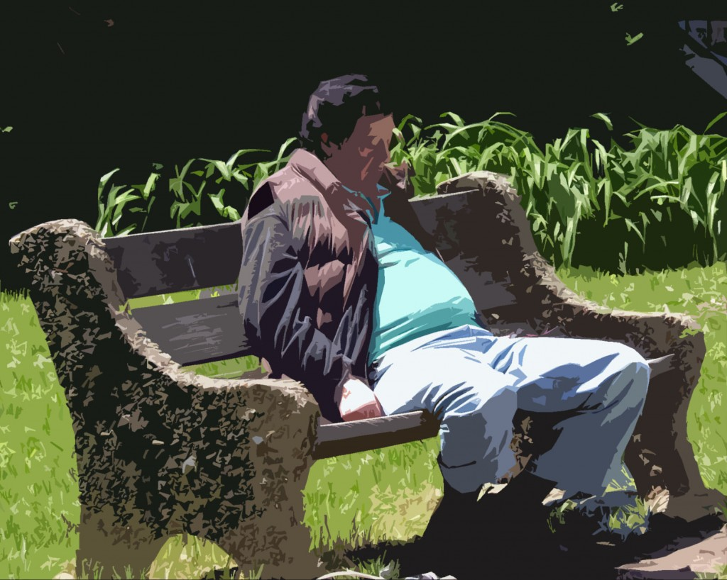 Park Bench Napper Painting