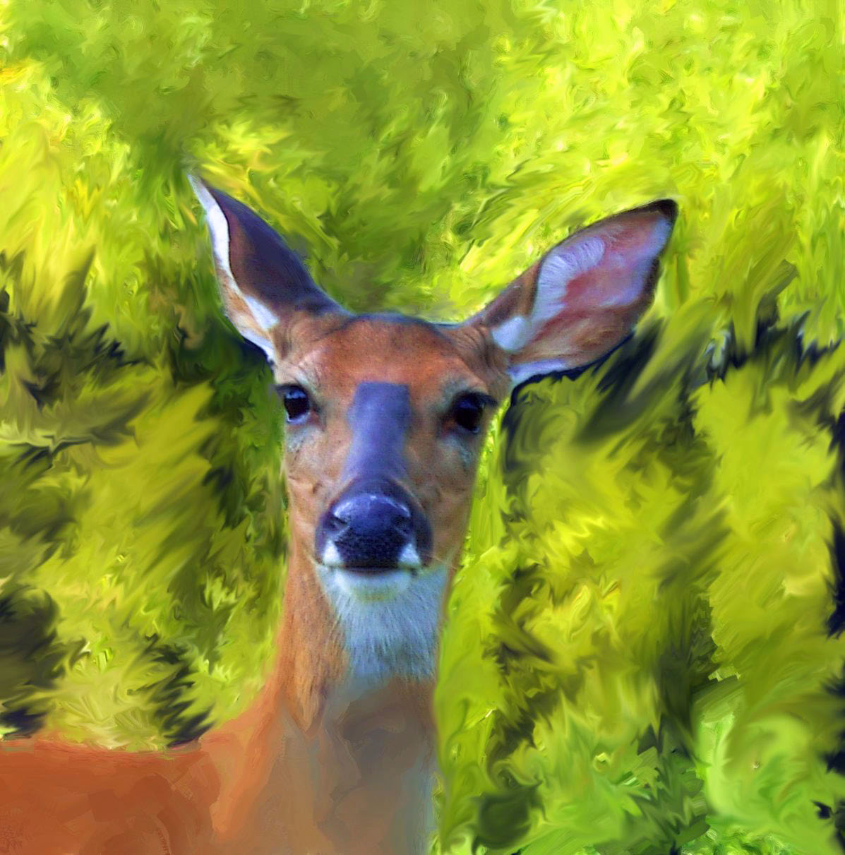 Doe A Deer Painting