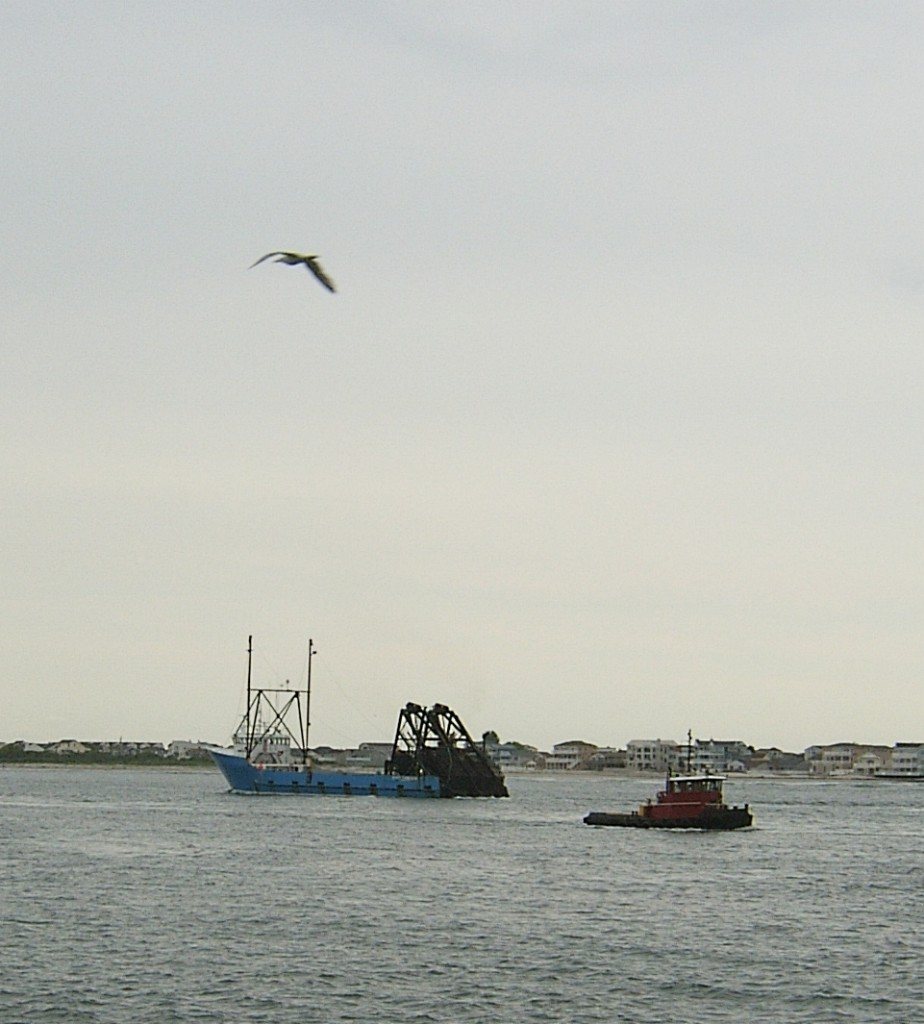 Fishing Boat Tug Absecon Channel