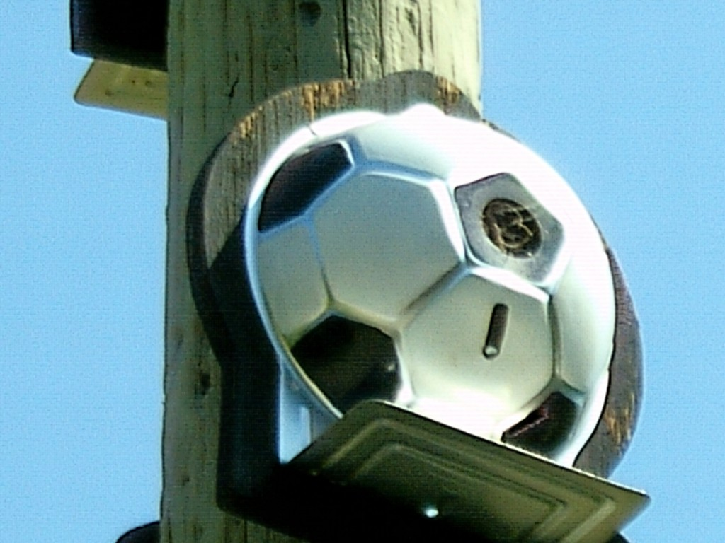 Soccer Ball Bird House