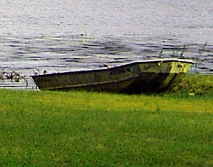 Beached Row Boat At Timber Lake New Jersey