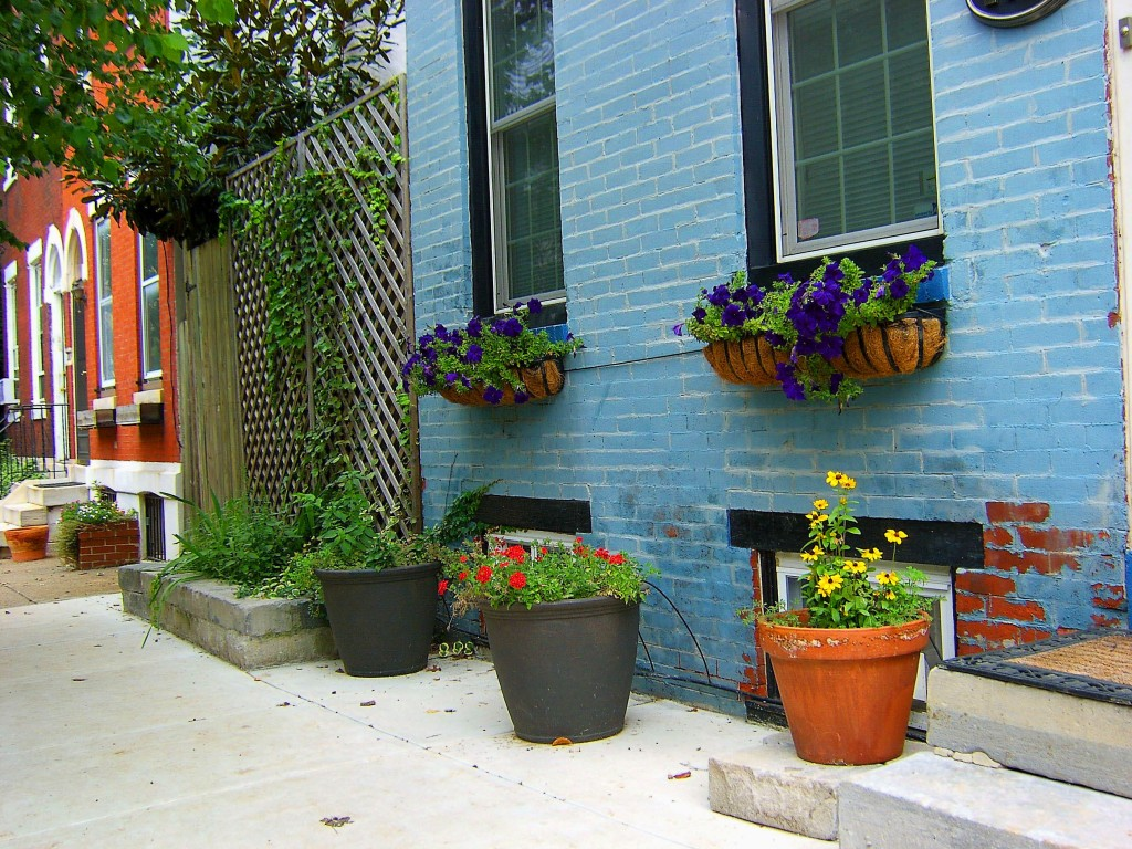 City Corner Property Landscaped With Planters & Window Boxes
