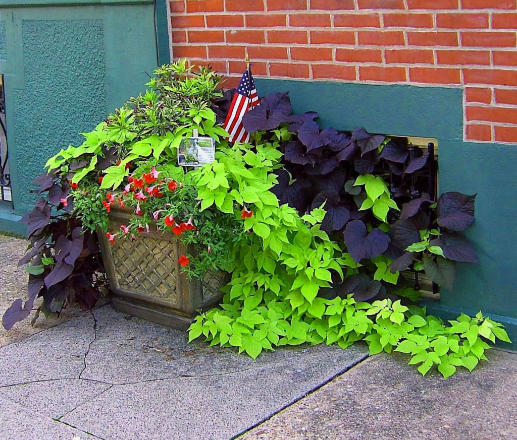 Colorful Patriotic City Sidewalk Planter