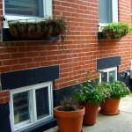 Custom Window Boxes & Planters In Front Of Row Home In Philadelphia