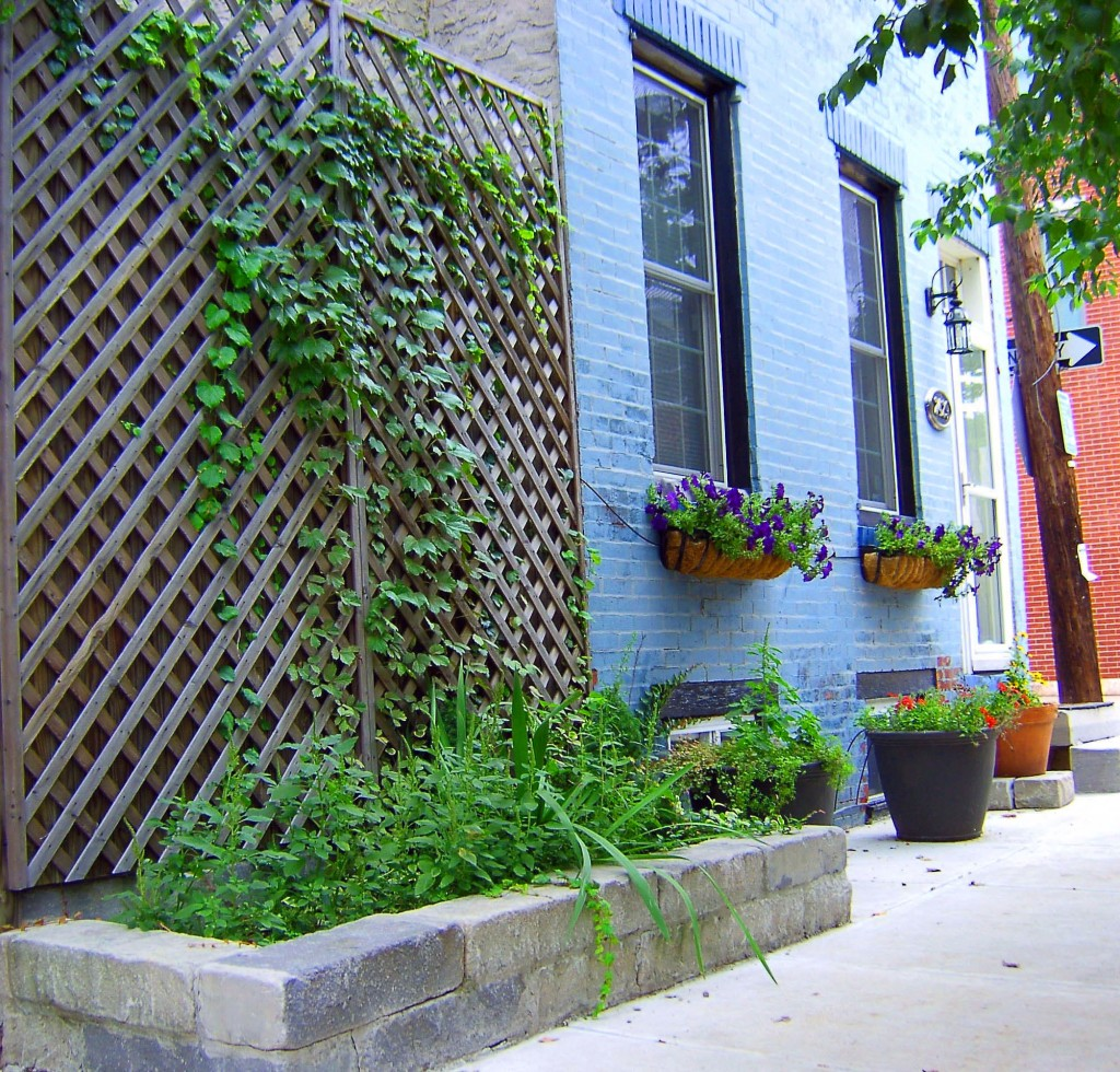 Landscaped Philadelphia Corner Property