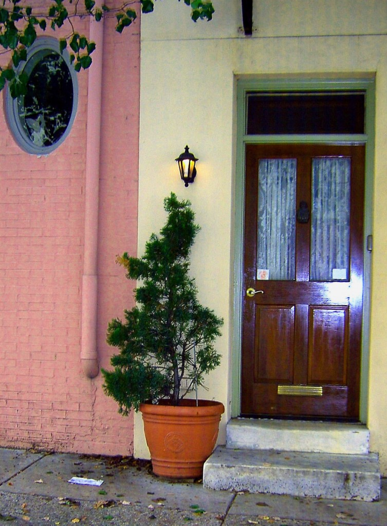 Large Urban Fern Step Side Planter