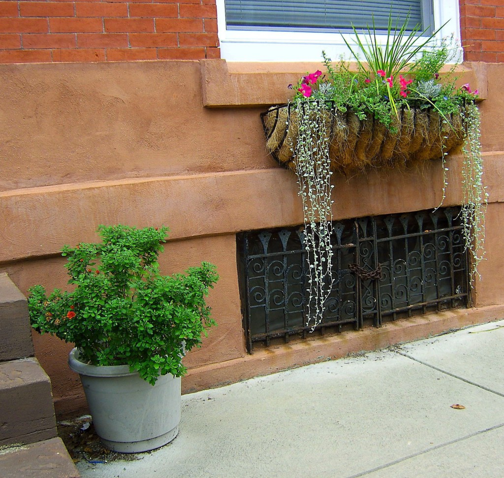 Single  Sidewalk Planter & Window Box
