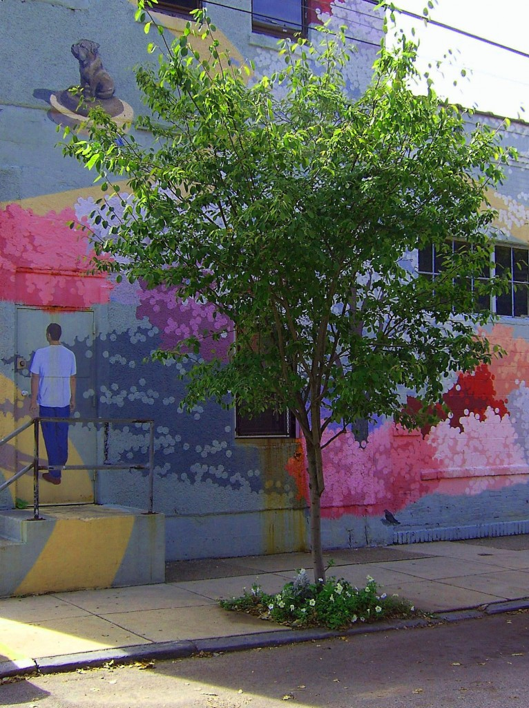 Urban Curbside Tree With Flowered Base Against Mural Wall