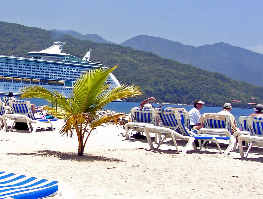 Young Palm Tree On Labadee Beach Haiti