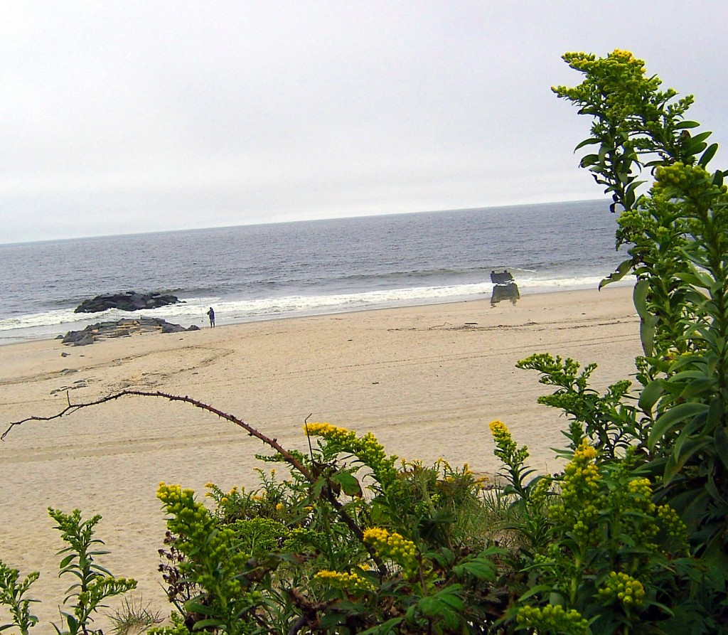 JERSEY SHORE FISHERMAN BETWEEN JETTIES & BEYOND THE VEGETATED DUNE