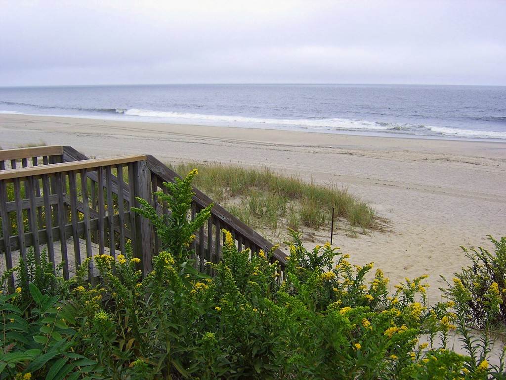 WOODEN STAIR ENTRANCE TO JERSEY SHORE BEACH & THRU VEGETATED DUNE