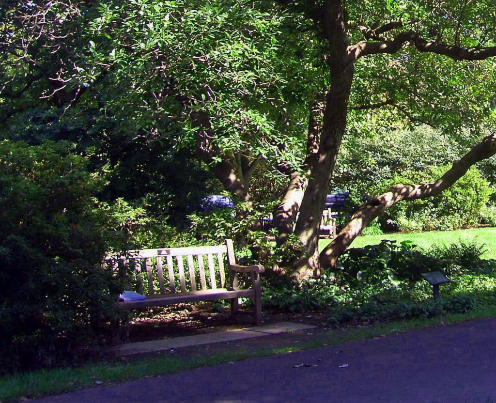 AZALEA GARDEN BENCH IN FAIRMOUNT PARK