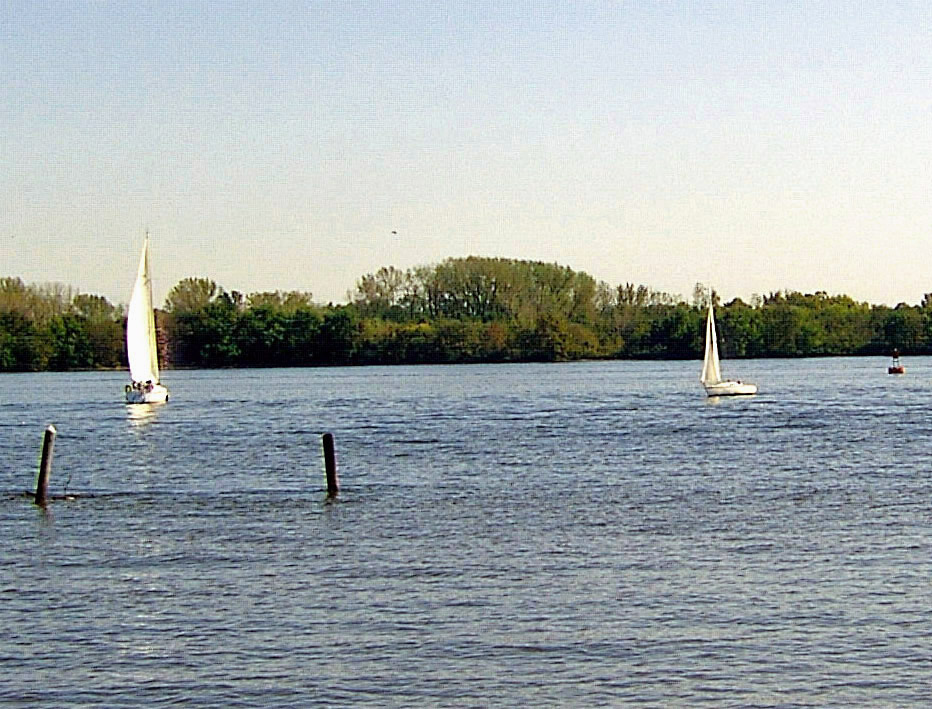 SAIL BOATS ON THE DELAWARE RIVER NEAR PHILADELPHIA