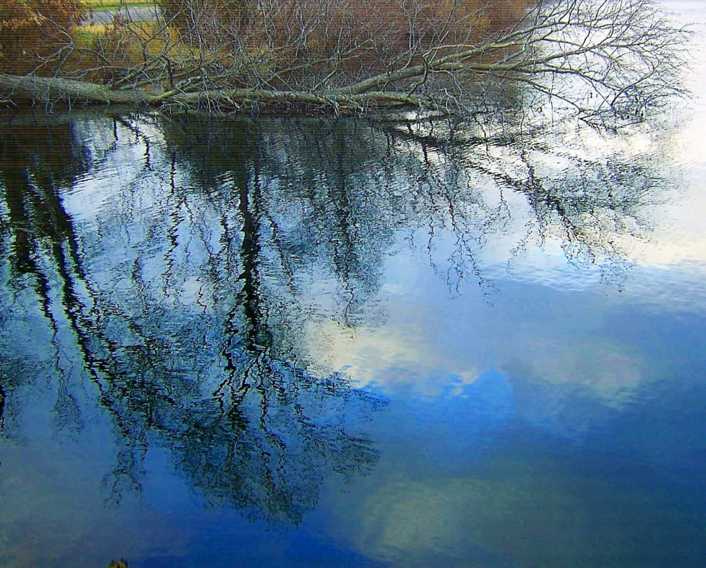 Winter Sky & Tree Lake Reflections