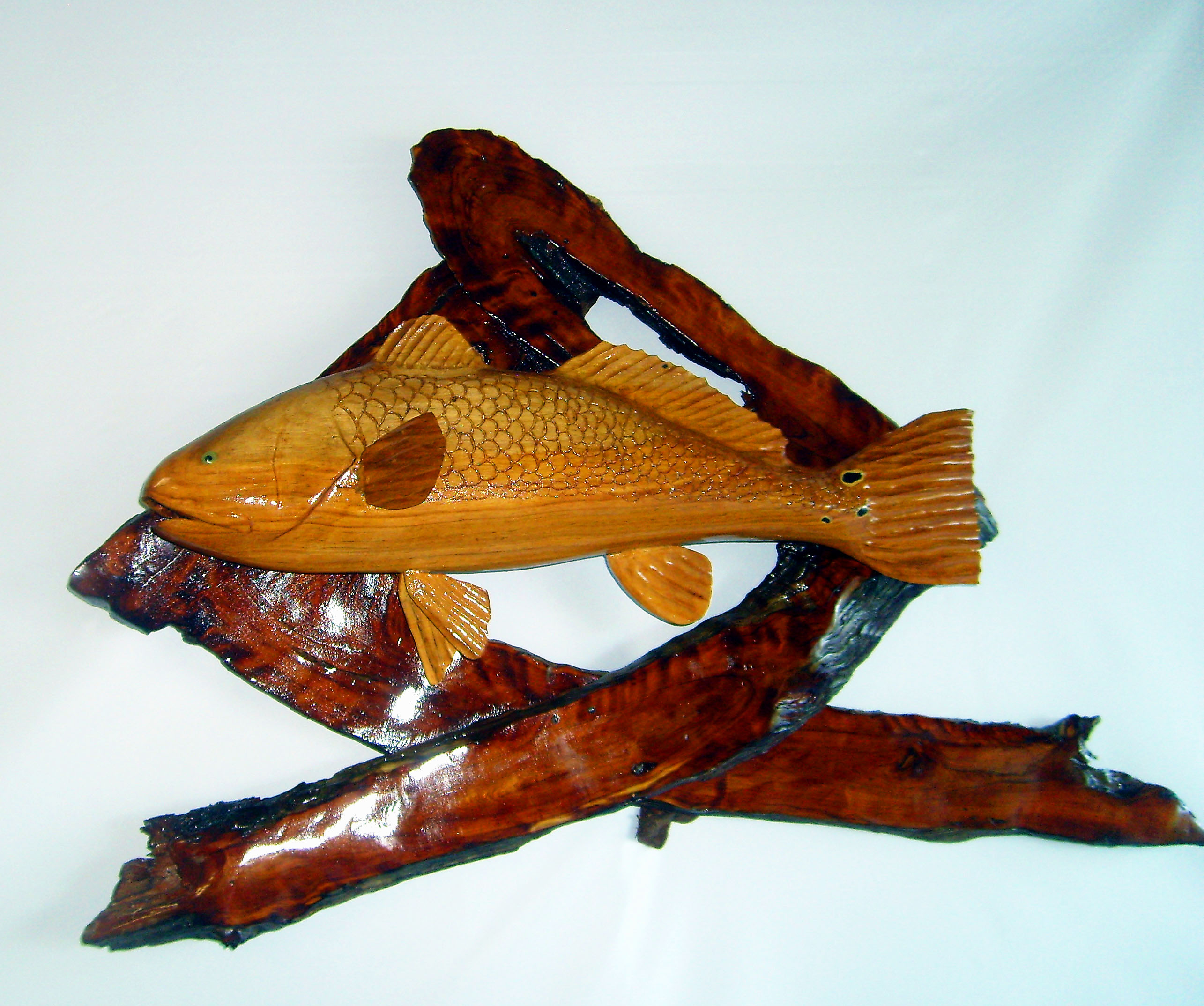 Carved pecan red fish mounted on driftwood love s photo