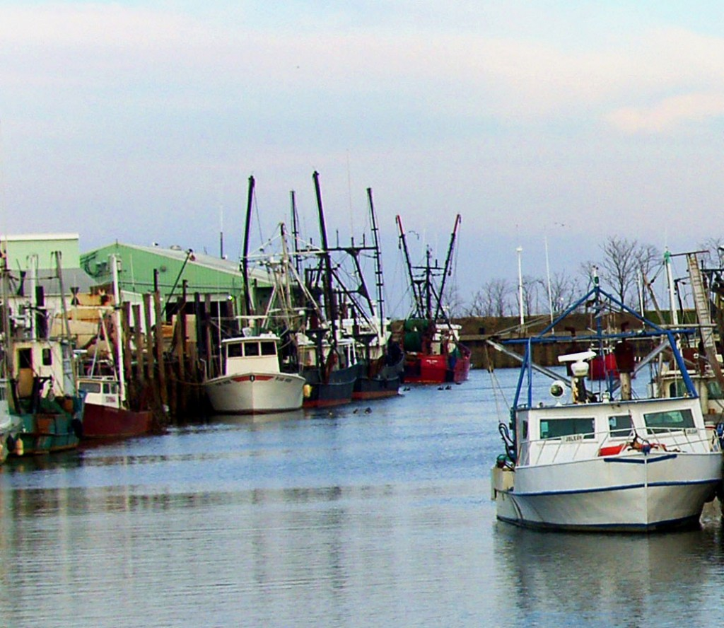 Fishing Boats Docked In North Jersey