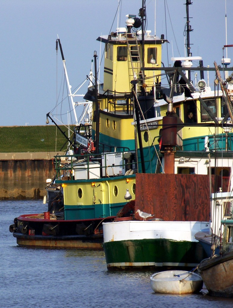 Colorful Fishing Boats In New Jersey Harbor