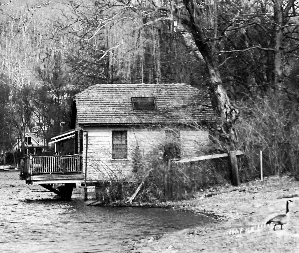 Black & White Of Mountain Lake House