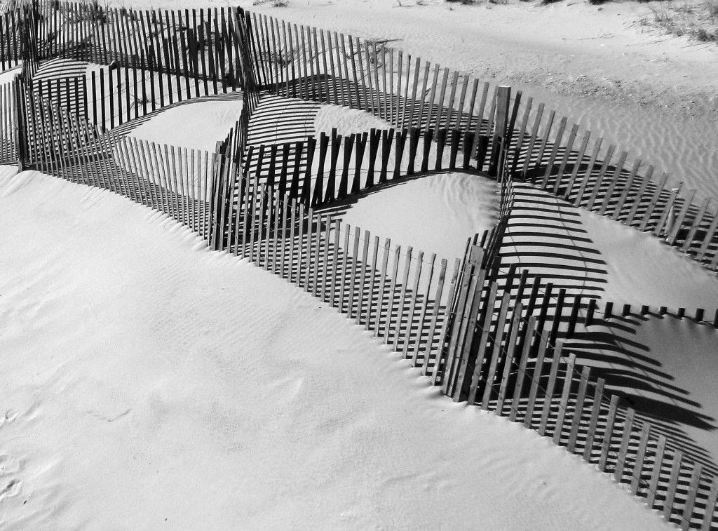 Jersey Sand Dune Fence & Shadows