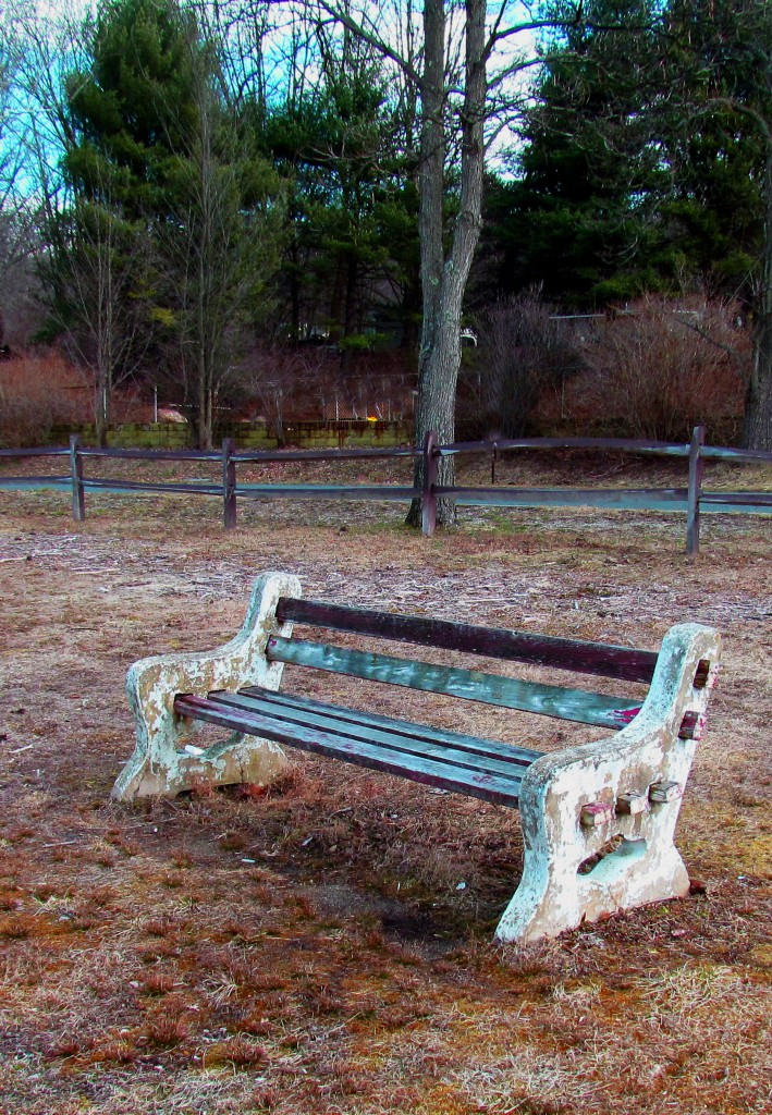 Park Bench At Mountain Lake Park