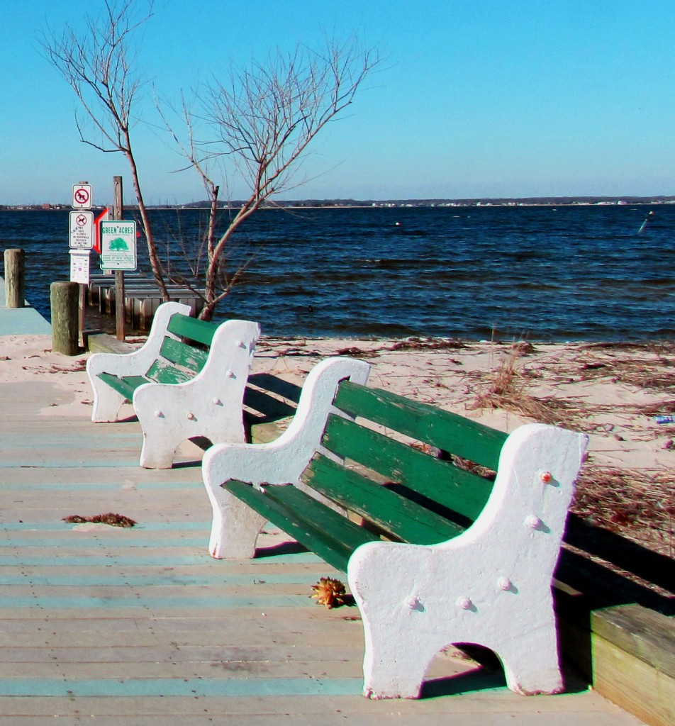 Park Benches On Sea Gull Pier At Barnegat Bay NJ