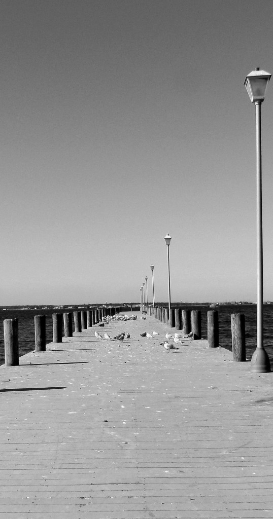 Sea Gull Pier On Barnegat Bay At Seaside NJ