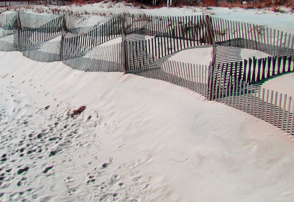 Sea Shore Sand Dune Fence