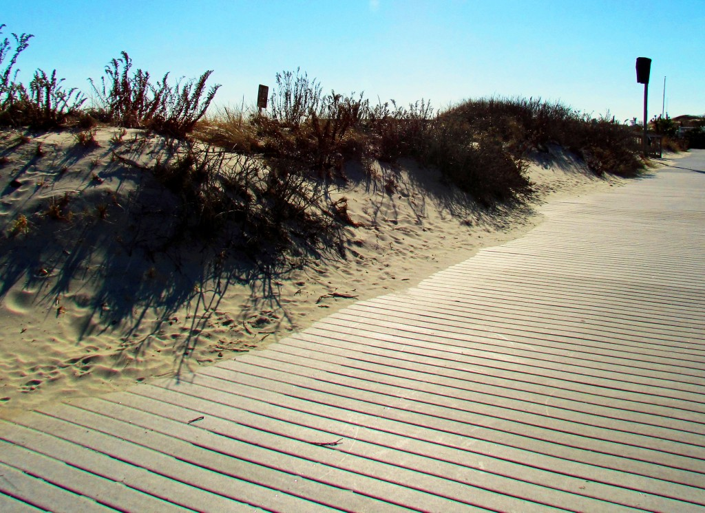 Seaside Sand Dune & Boardwalk