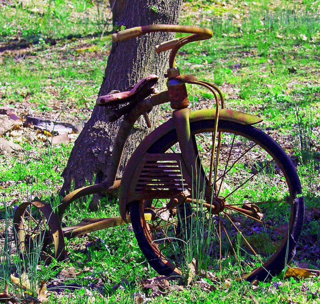 Antique Rusted Tricycle