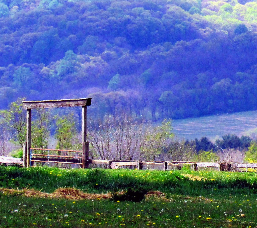 Corral Gate On New Jersey Farm