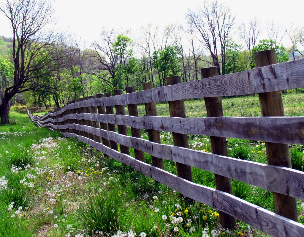 Long & Winding Farm Fence In Central NJ