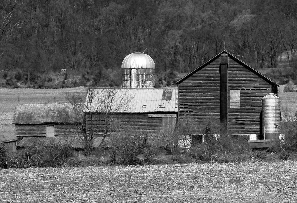 Black & White Of Old Farm Buildings