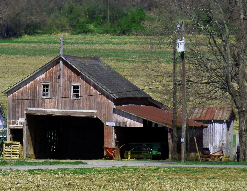 Old Jersey Farm Shed
