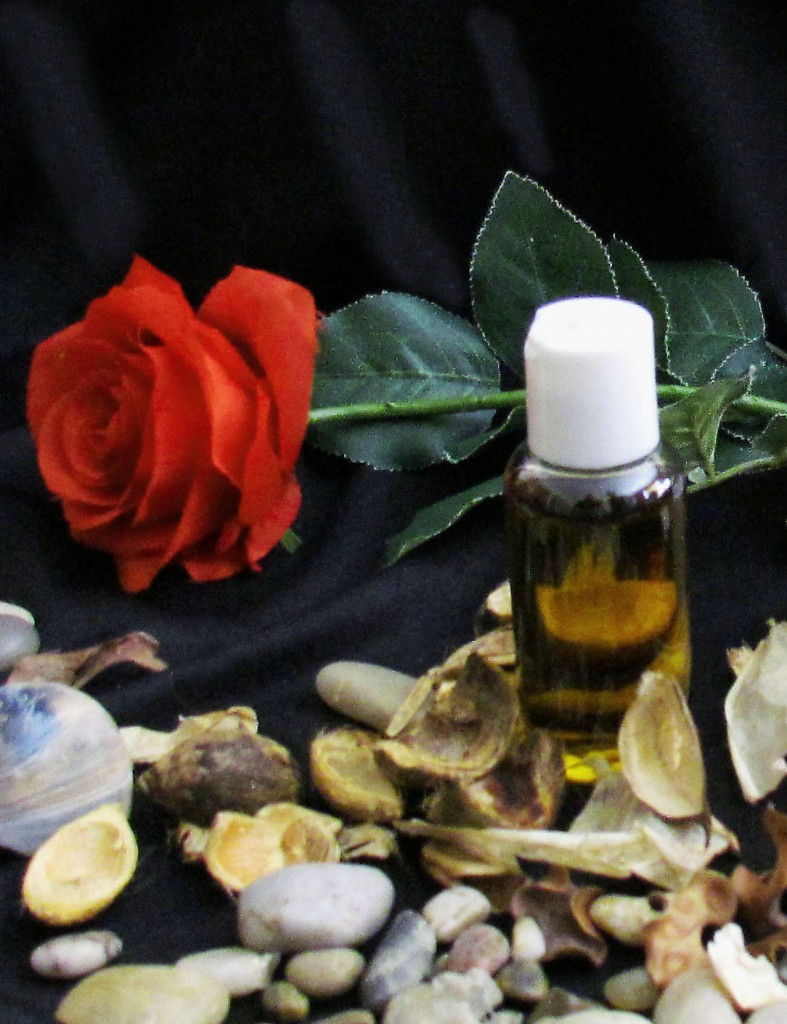Red Rose Softly Displayed With Massage Therapy Oil
