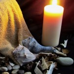 Sea Shells Displayed With Massage Therapy Towels & Candle