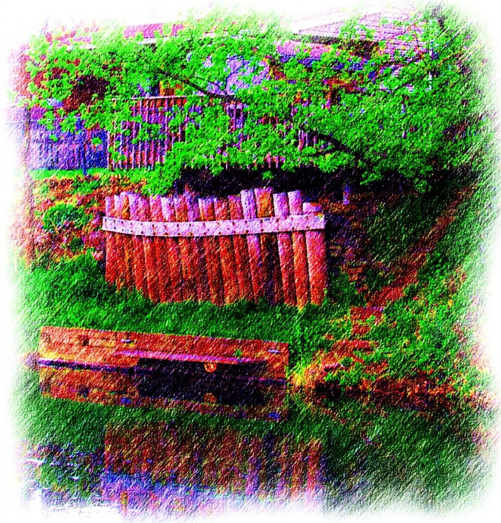 Color Photo Sketch Of Back Yard Canal Canoe Launch