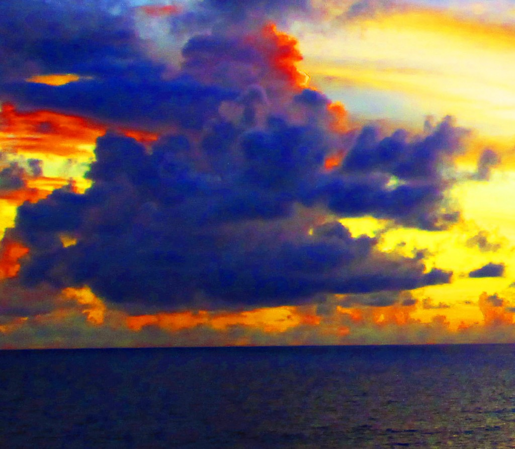 Happy Dog Face Fish Cloud In The Caribbean