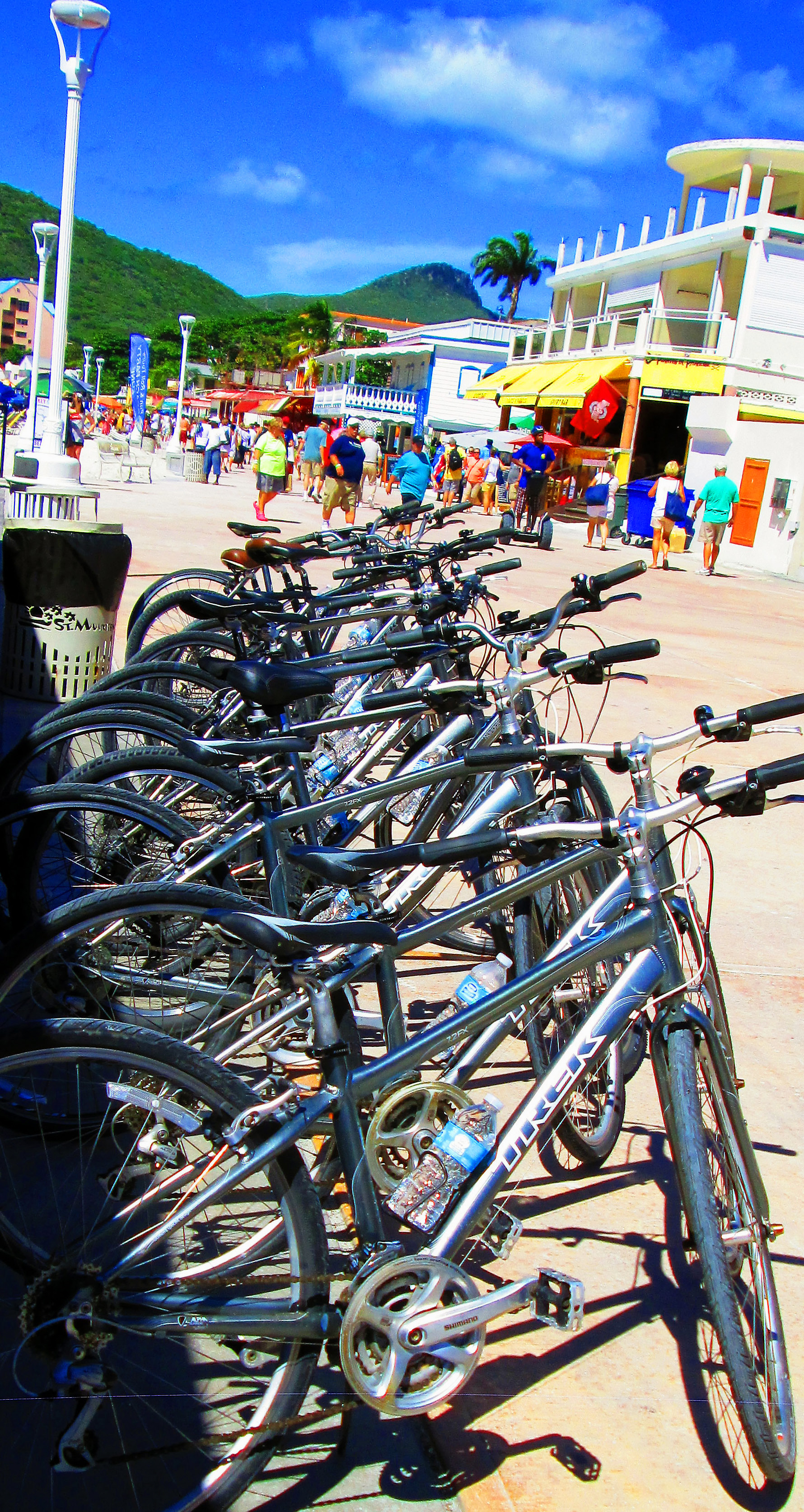 Trex Bicycles Lined Up For Rent On St Maarten Boardwalk