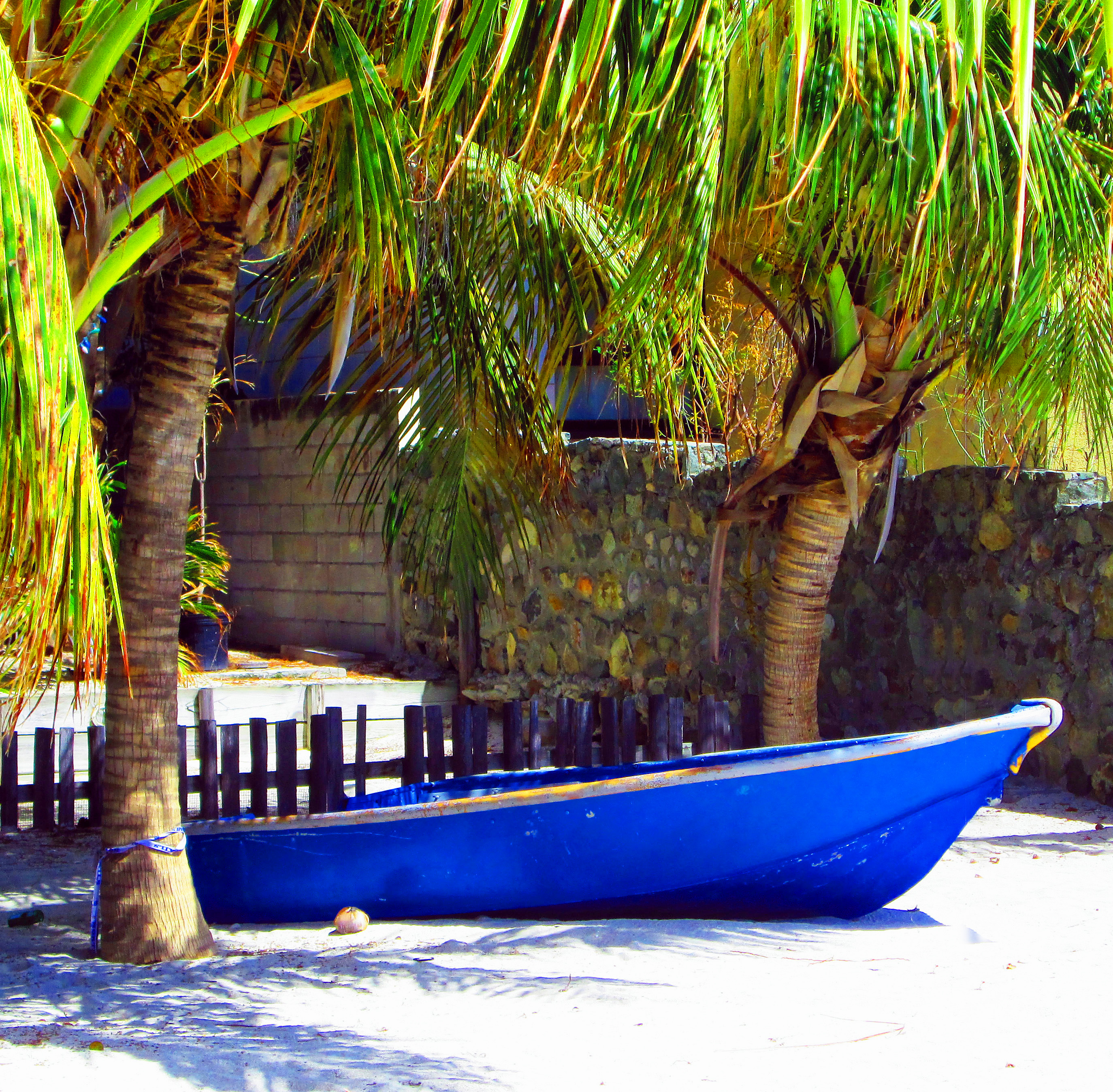 Beached-Boat-Between-Two-Palm-Trees