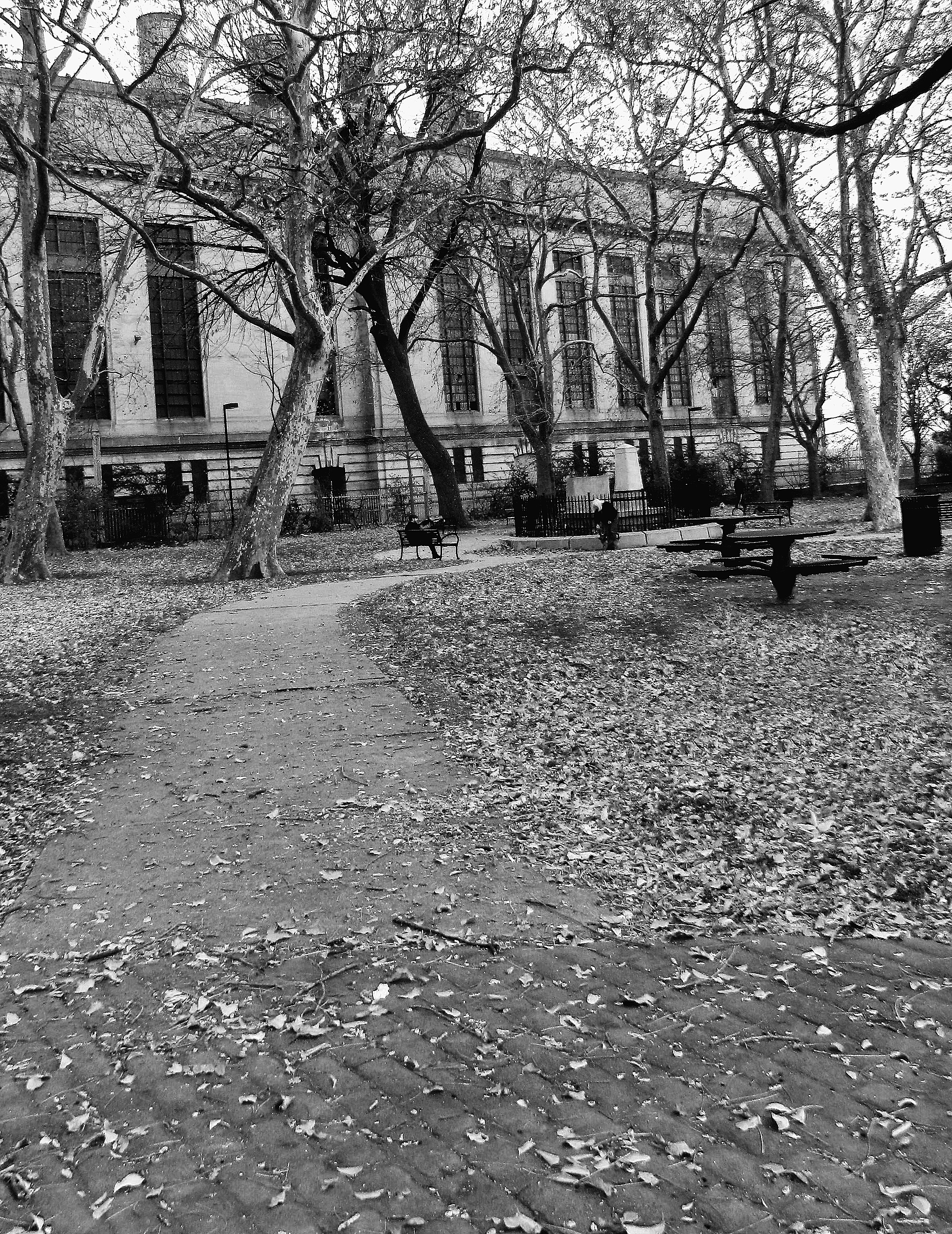 Black & White Penn Treaty Park Philadelphia