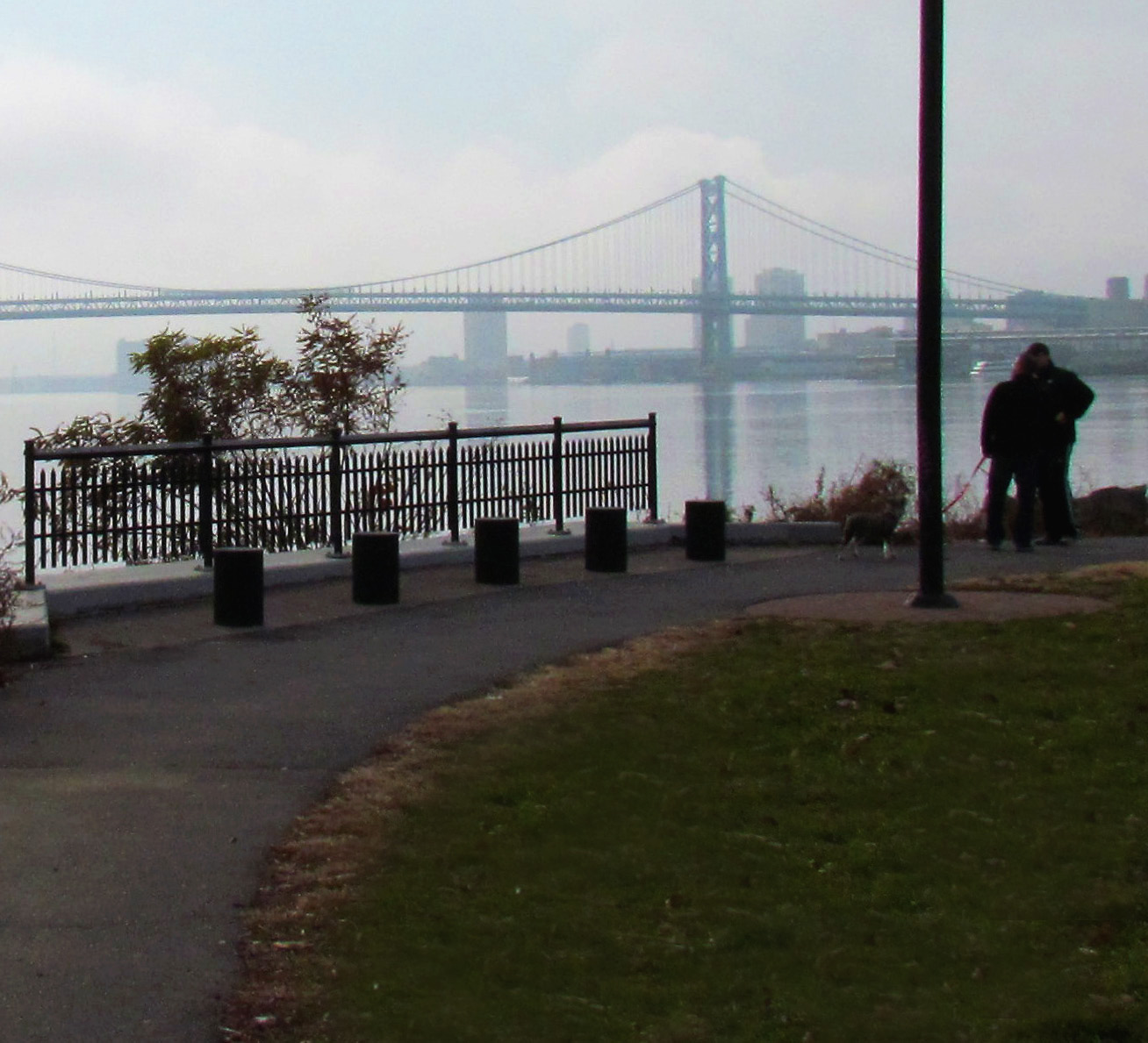 Dog Walking By Ben Franklin Bridge