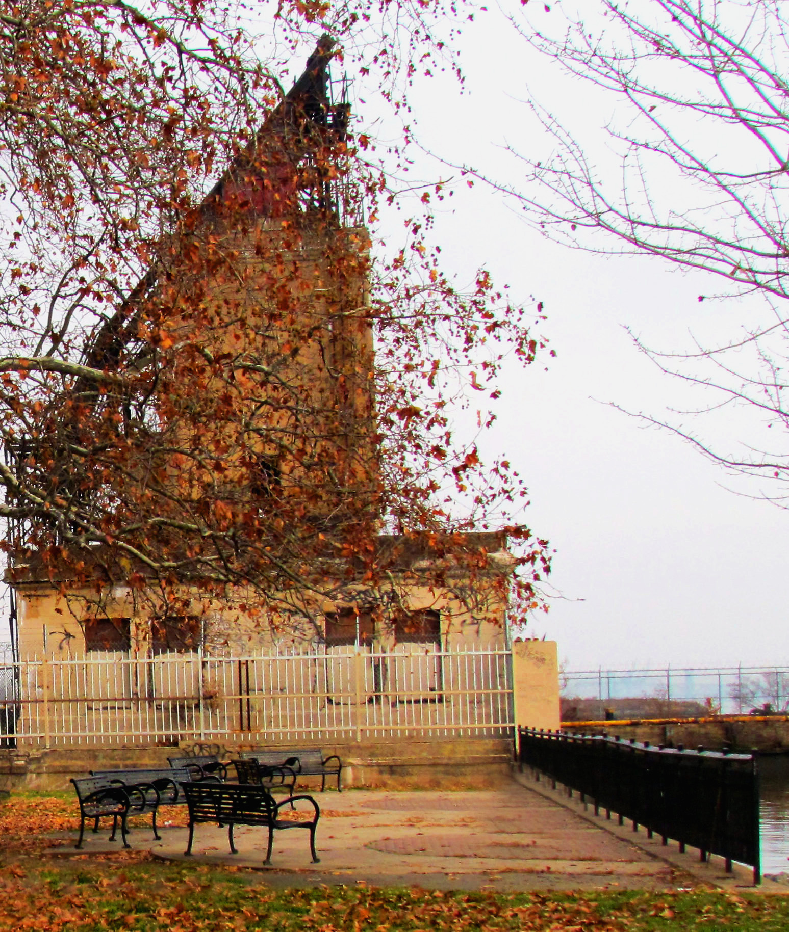 Riverside Park Patio In Fishtown Philadelphia