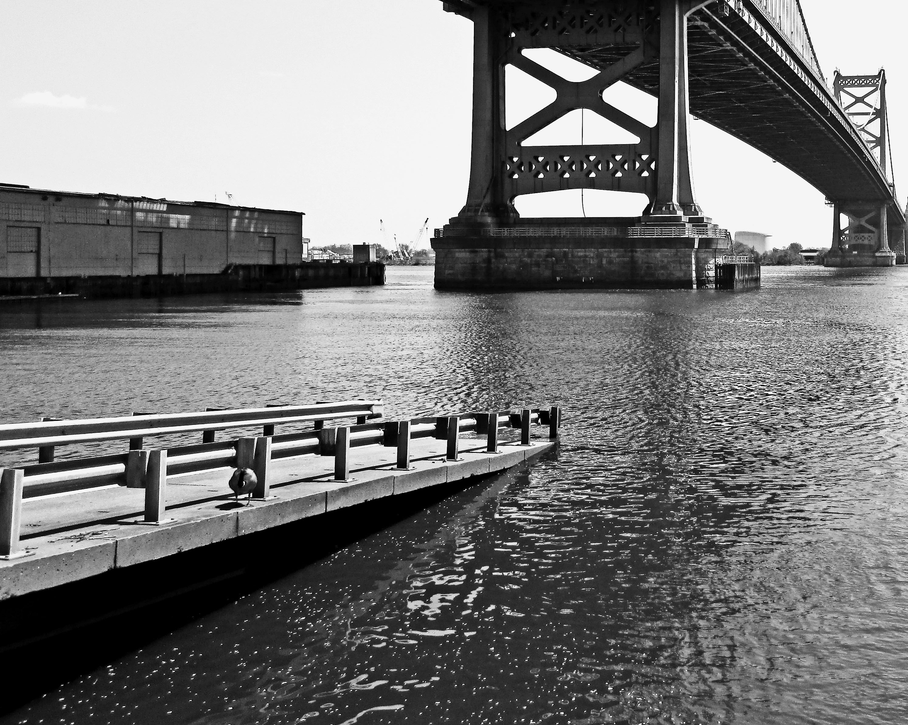 Ride The Ducks Ramp Under The Ben Franklin Bridge