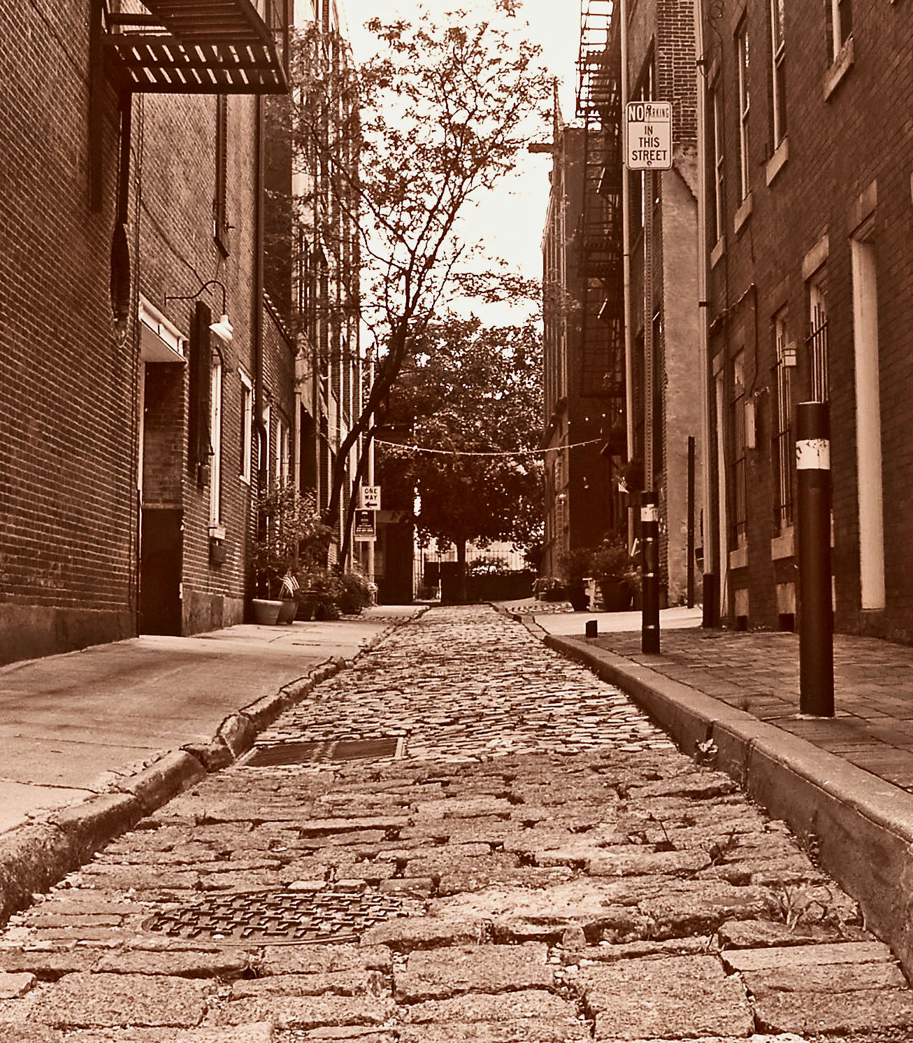 Small Cobblestone Street In Philly