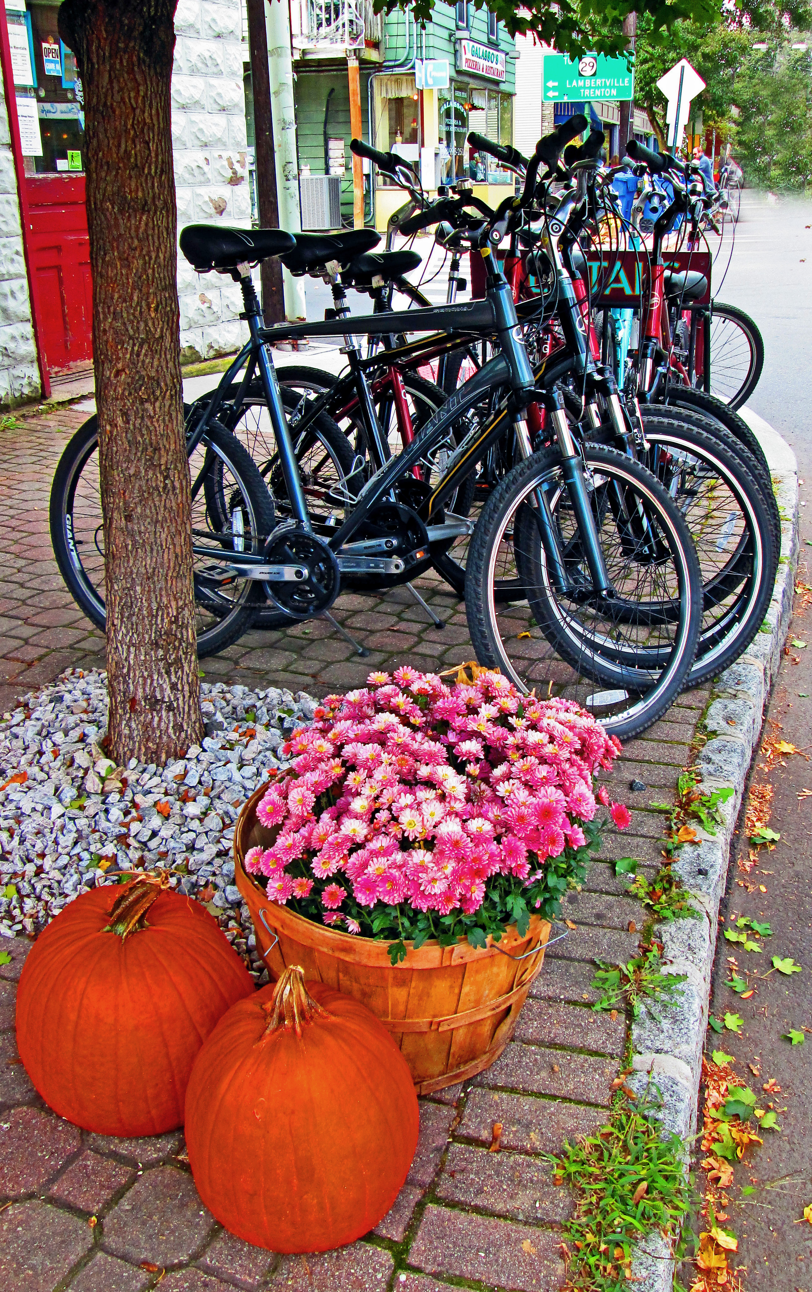 Frenchtown Fall Display & Bicycle Rentals