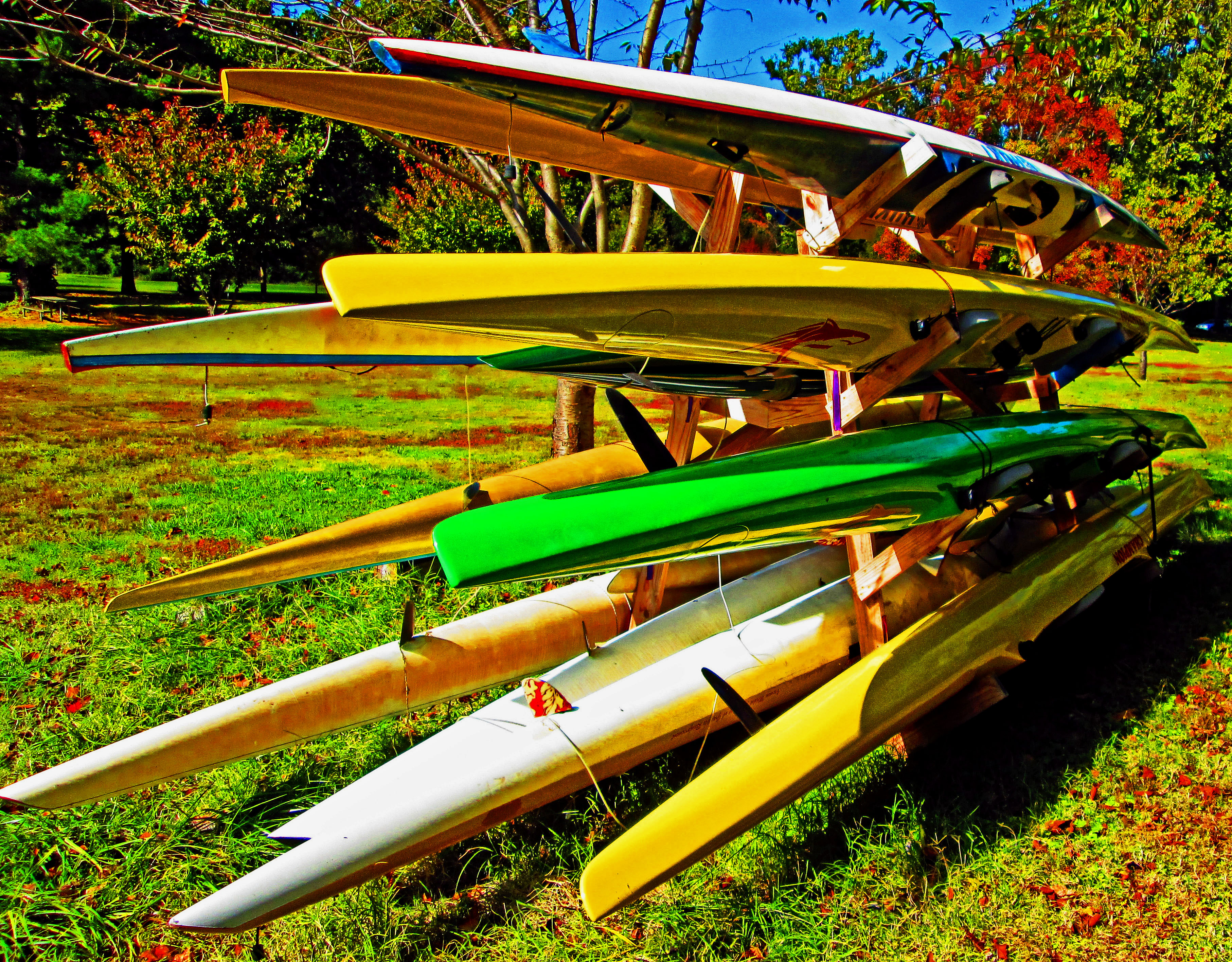 Rowing Sculls Racked In Fairmount Park