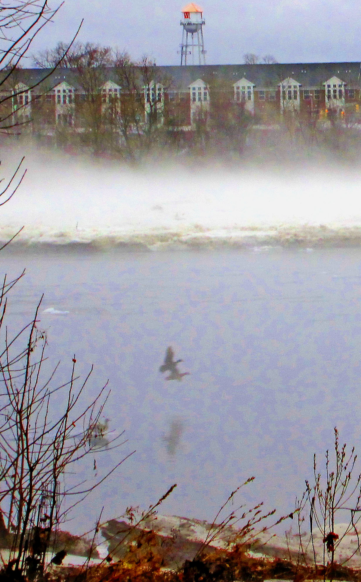 Ghostly Geese Taking Flight Over Ice Jammed River