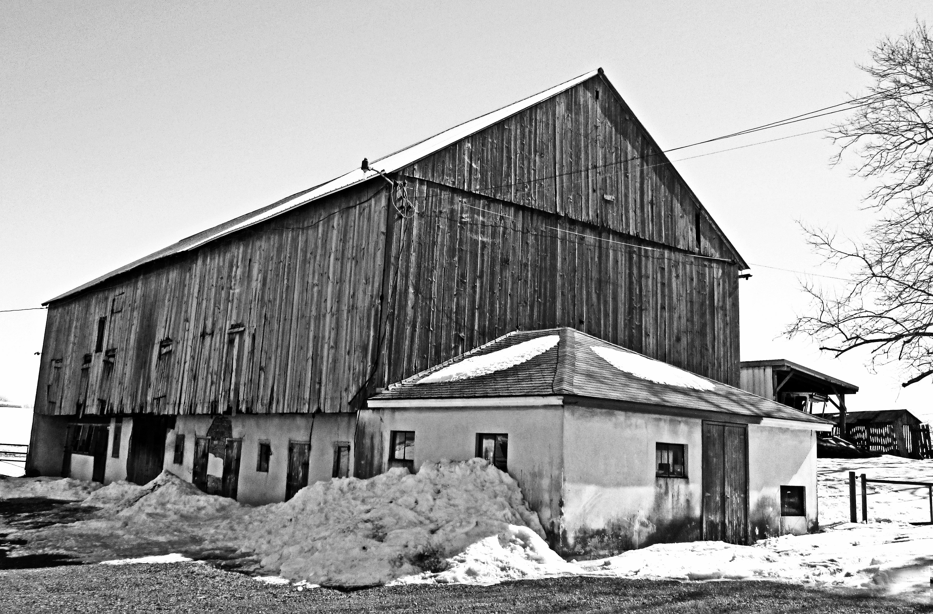 Black & White Of Abandoned Farm Structures