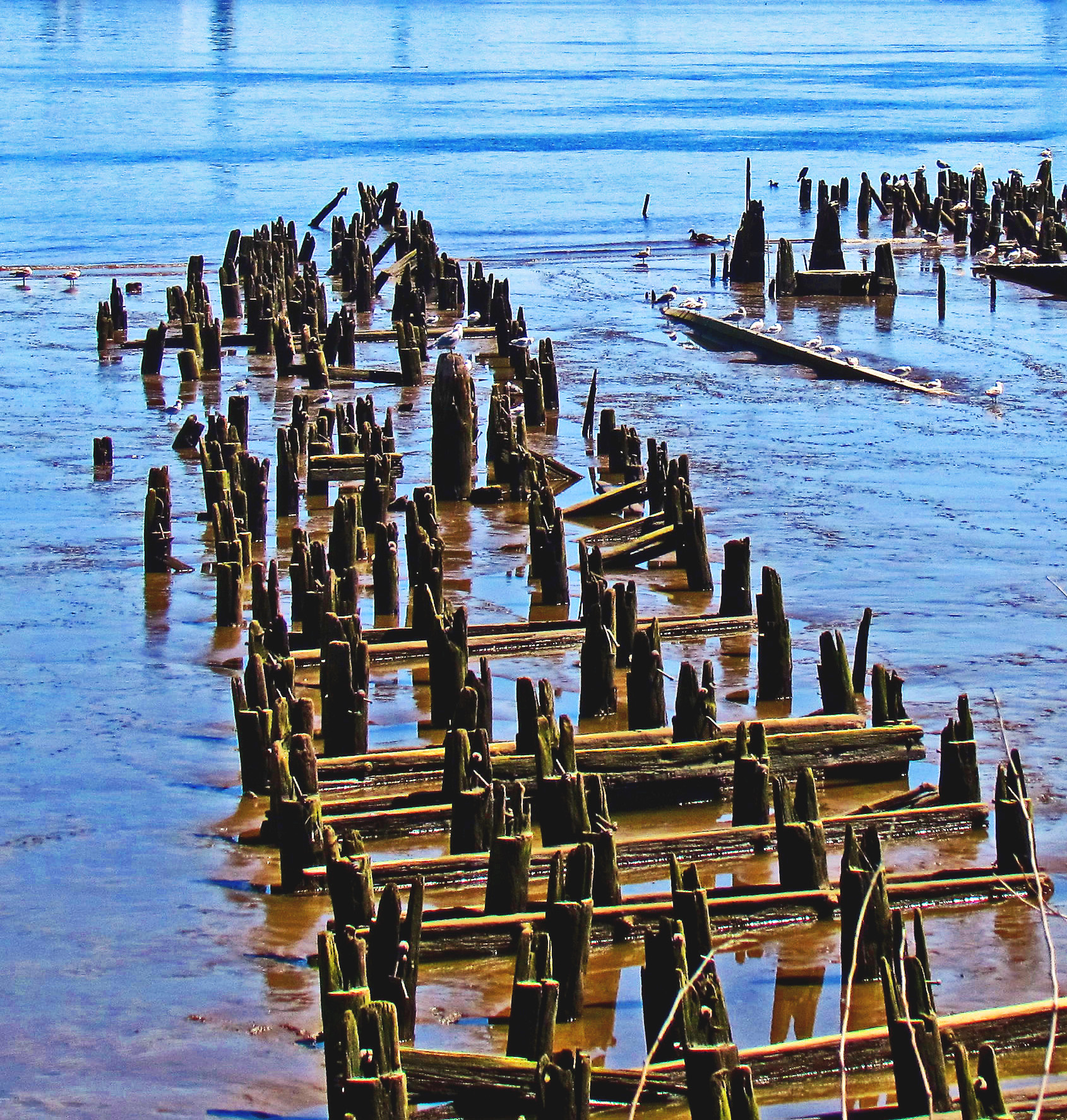 Remains Of Old Docks & Piers